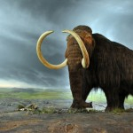 Overlapping History - Mammoths and Pyramids